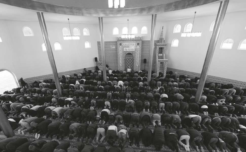 """""""덴마크 정부, 소수 종교 억압한다"""""""