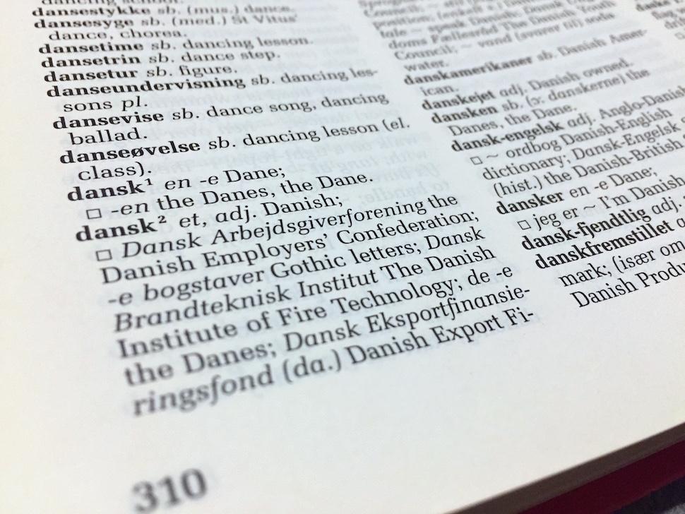 덴마크어 사전 (사진: 안상욱)
