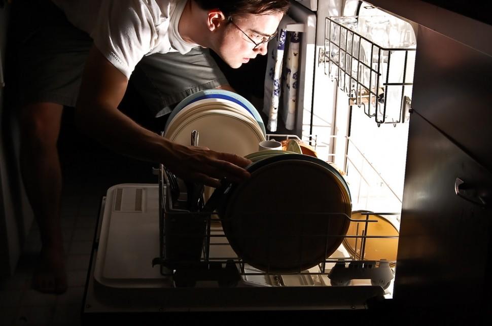 접시닦이 (출처: 플리커 CC BY-SA Ryan Hyde)